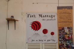 It doesn't actually say what they massage.